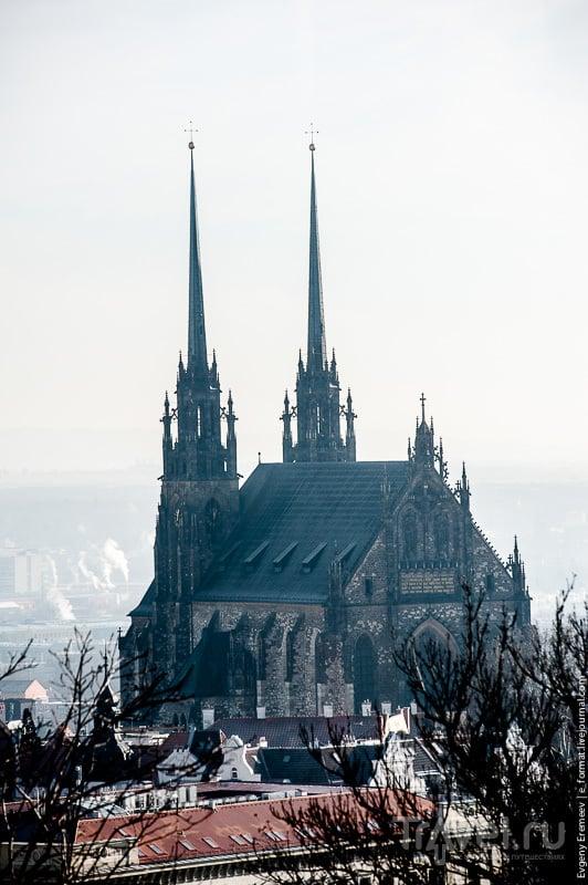 Собор святых Петра и Павла в Брно, Чехия / Фото из Чехии