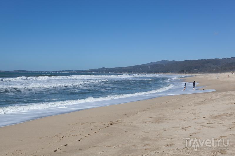 Sunset State Beach в Калифорнии, США / Фото из США