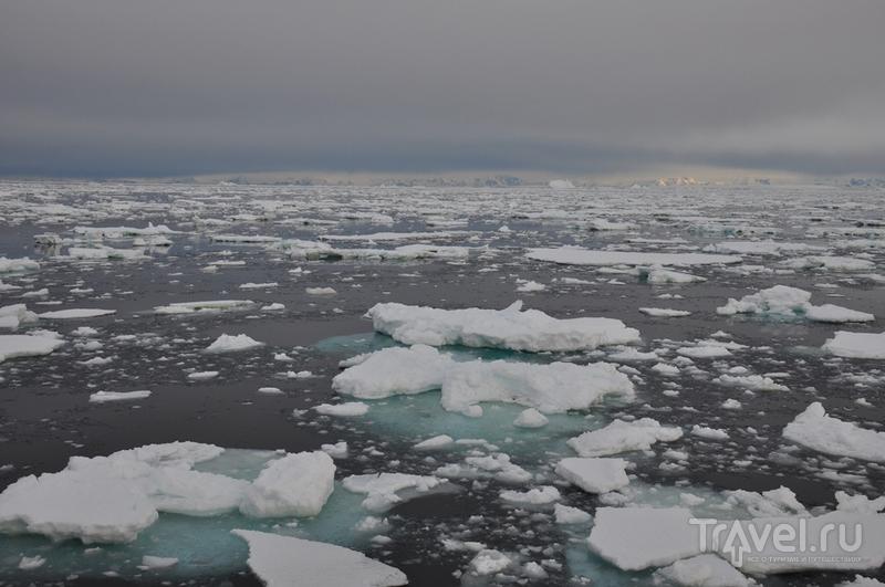 Новый год во льдах Антарктики / Фото из Антарктики