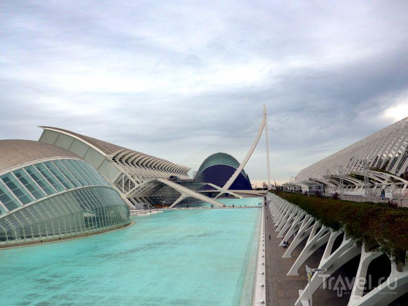 Город искусств и наук в Валенсии, Испания / Фото из Испании