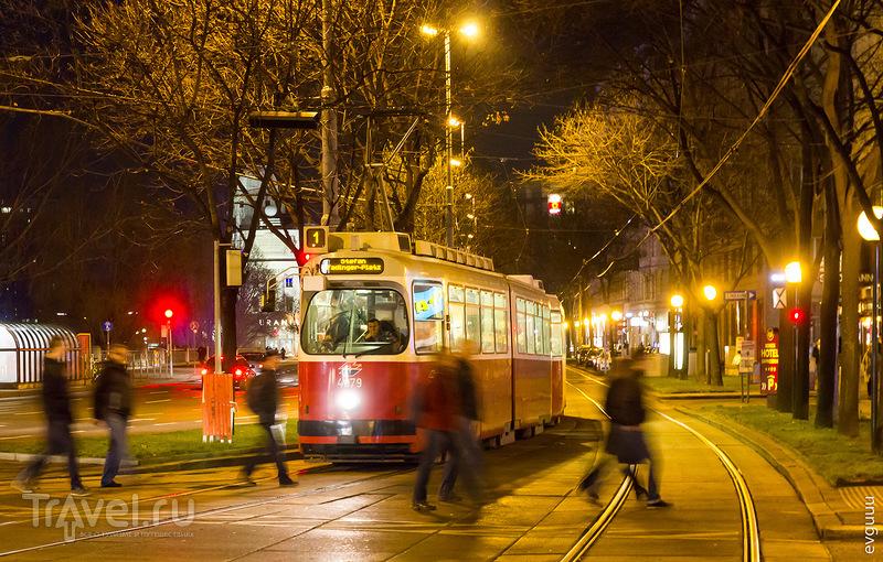 В городе Вена, Австрия / Фото из Австрии