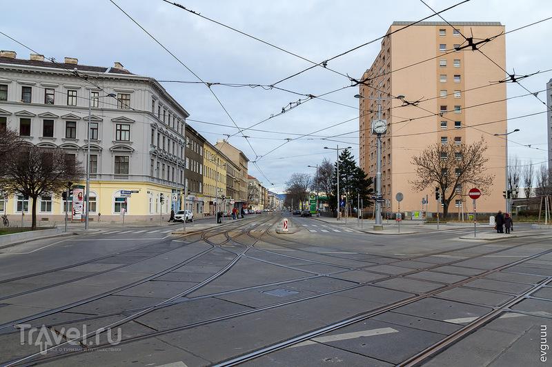 Предновогодняя Вена / Фото из Австрии