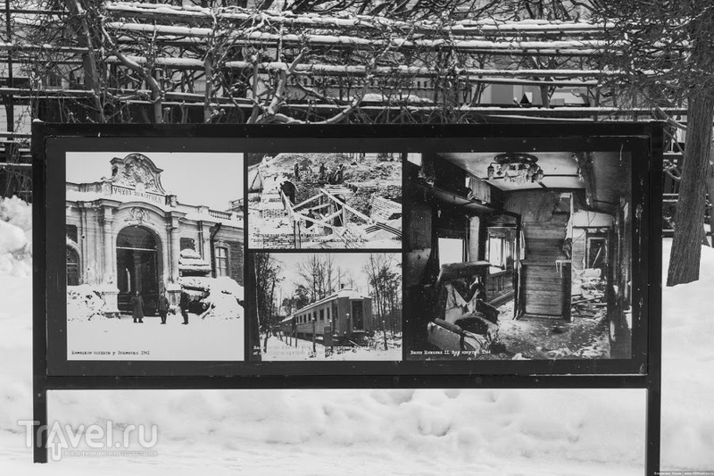 Петергоф зимой - снег, солнце, тишина / Фото из России