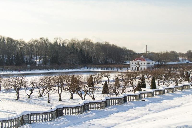 Сад Венеры и Марлинский пруд в Петергофе, Россия / Фото из России