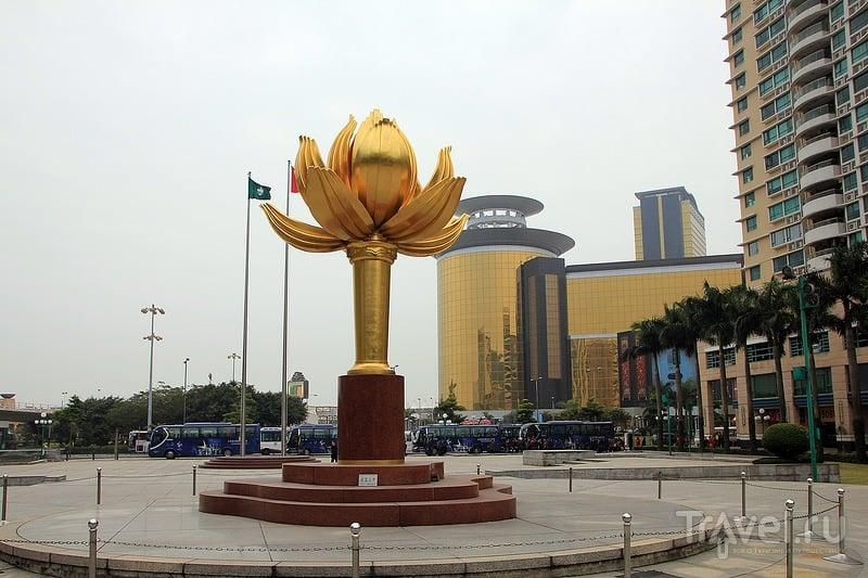 Lotus Square в Макао / Фото из Макао