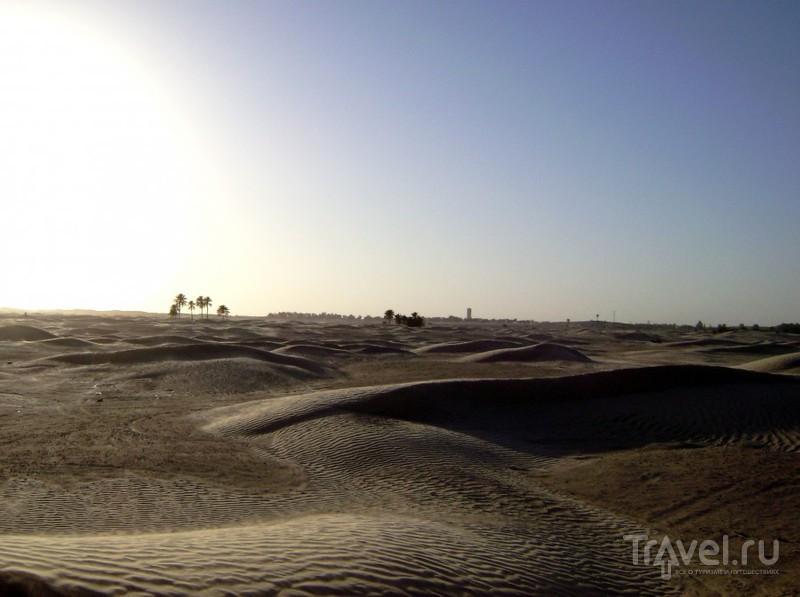 В пустыне Сахара, Тунис / Фото из Туниса