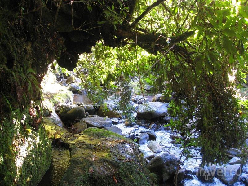 Прогулки по Мадейре. Пешком из Сантаны в Фуншал / Португалия
