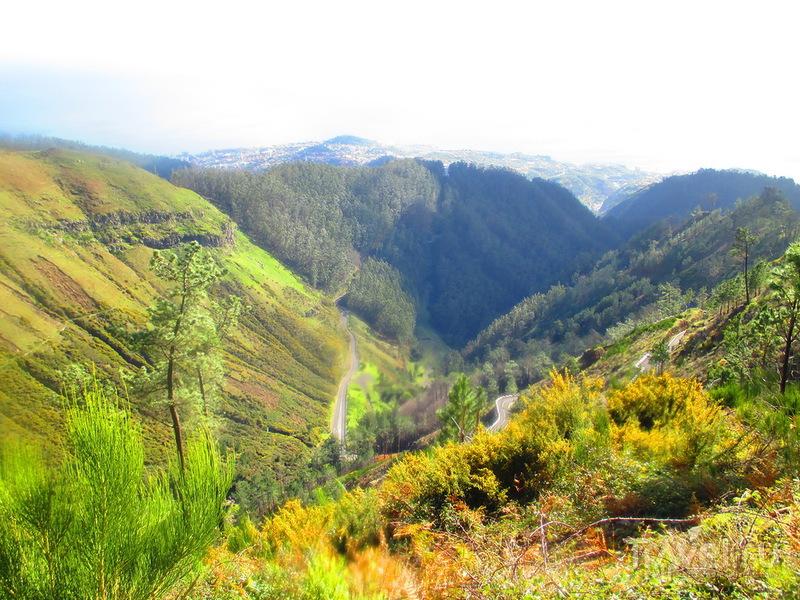 Мадейра. Прогулка по Леваде-да-Негра к Пику Ариэйро / Португалия