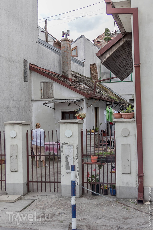 За большой советской стеной. Zemun / Фото из Сербии