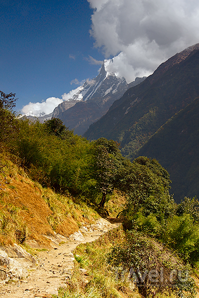 Горная тропа / Фото из Непала