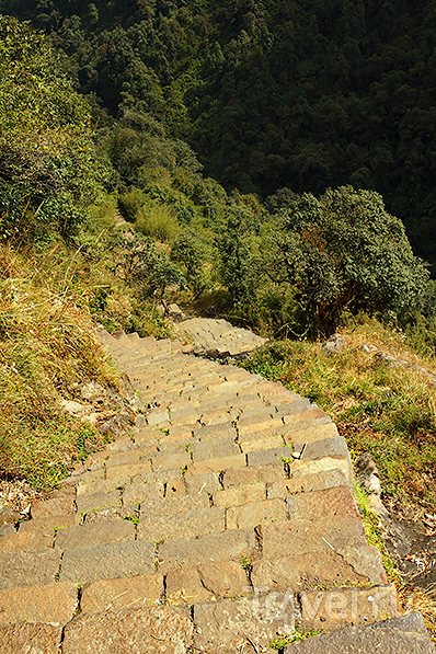 Лестница внизу в ущелье,  в Бамбу / Фото из Непала