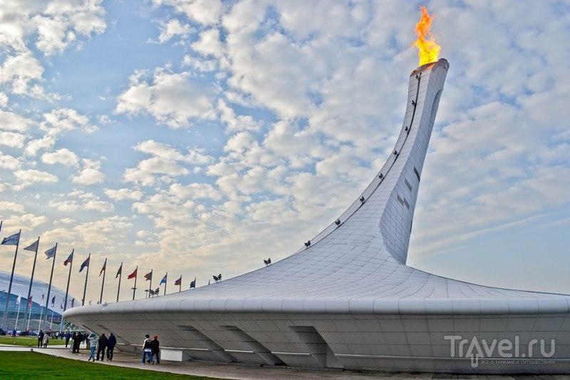 Олимпийский факел в Сочи, Россия / Фото из России