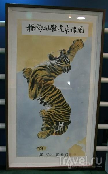 Мыс Хомигот (хвост тигра) у города Пхохан / Южная Корея