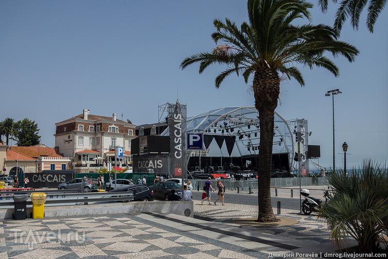 Подготовка к празднику / Фото из Португалии