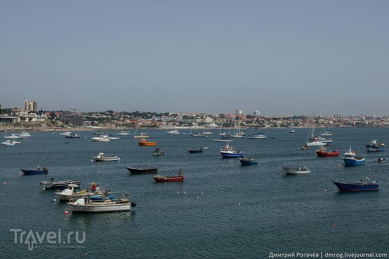 Вид на залив / Фото из Португалии