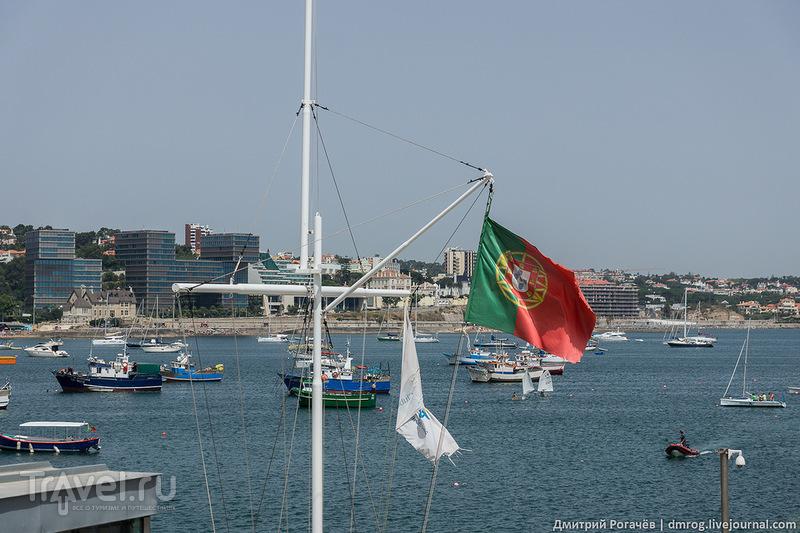 Португальский флаг над яхтой / Фото из Португалии