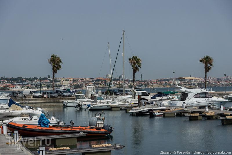 Лодки и яхты / Фото из Португалии