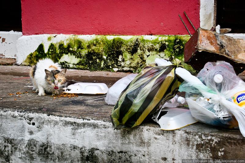 Венесуэла: Сьюдад-Боливар / Фото из Венесуэлы