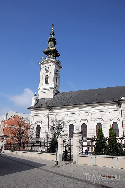 Сербия. Нови-Сад. Фотозарисовка / Фото из Сербии