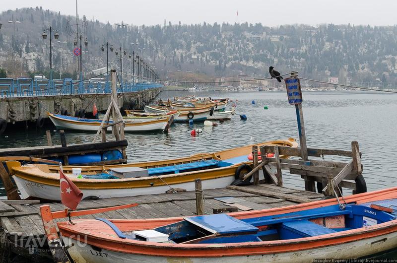 Залив Золотой рог в Стамбуле, Турция / Фото из Турции