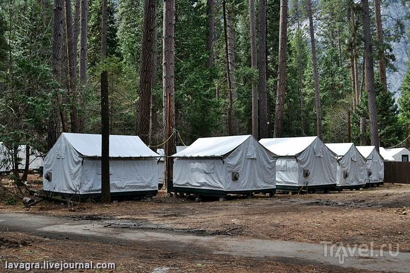 Национальный парк Йосемити - возможно, именно так выглядит рай! / Фото из США