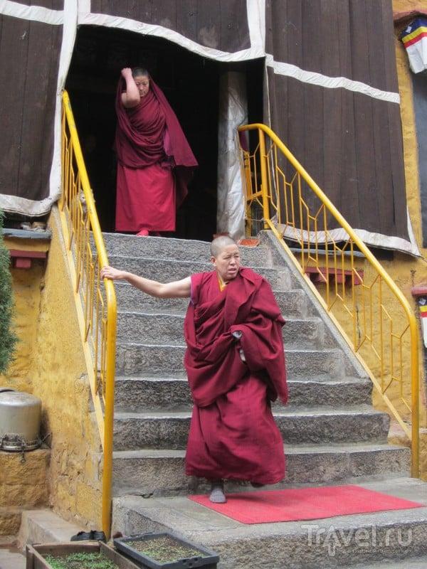 Знакомство с тибетцами и Тибетом / Китай