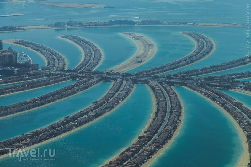 Острова Palm Jumeirah (Пальма Джумейра) в Дубае, ОАЭ / Фото из ОАЭ