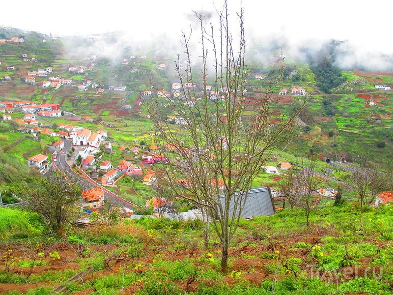 Мадейра. Прогулка по Леваде до Норте / Португалия