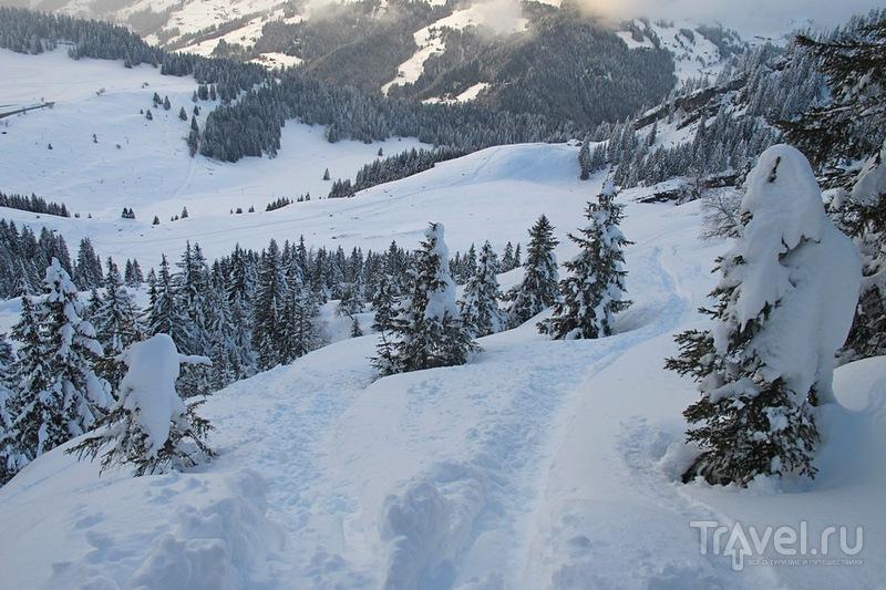 На горнолыжном курорте во Франции / Фото из Франции