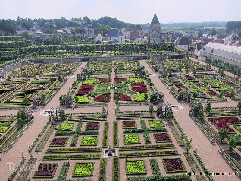 Декоративный огород / Фото из Франции