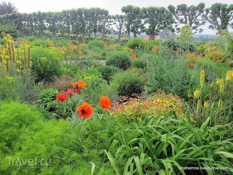 Сад cолнца (Jardin du soleil) / Фото из Франции