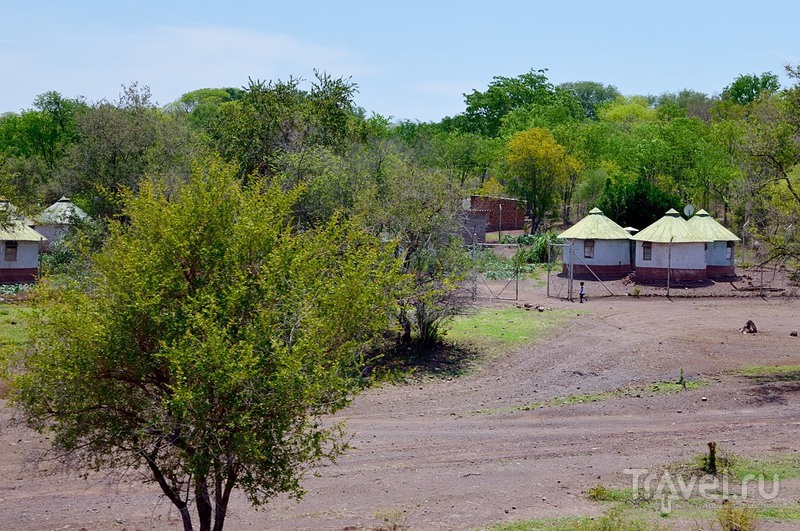 Южноафриканское сафари. Зимбабвийский поезд класса люкс / Зимбабве