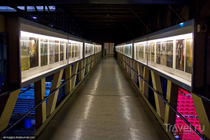 Швейцарская пивная империя Feldschlösschen / Фото из Швейцарии