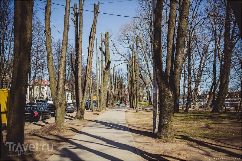Велопрогулка по Калининграду / Россия