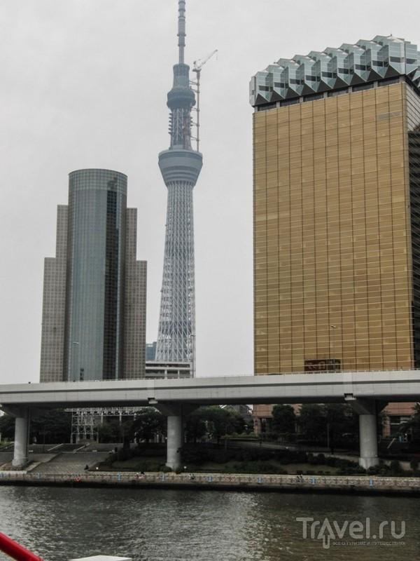 Токио. Взглянуть на Asahi / Япония