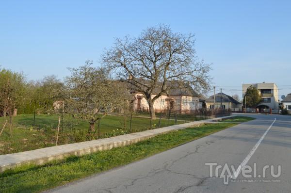 Одно село - две страны, два мира. На границе Украины и Словакии / Словакия