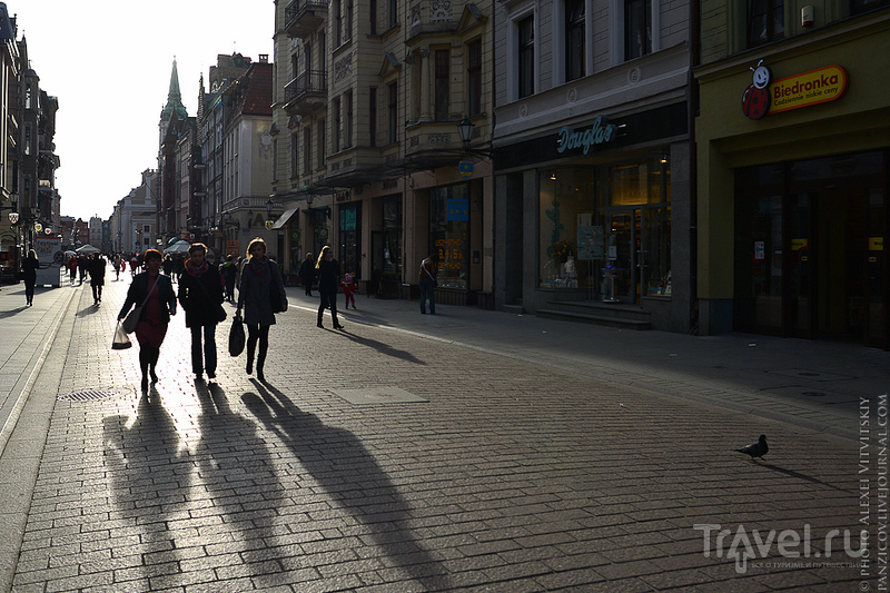 Космический пряник - Торунь 2014 / Фото из Польши