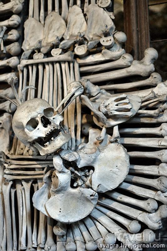 Костница в Чехии – пособие, как создать захватывающий интерьер из человеческих костей / Фото из Чехии