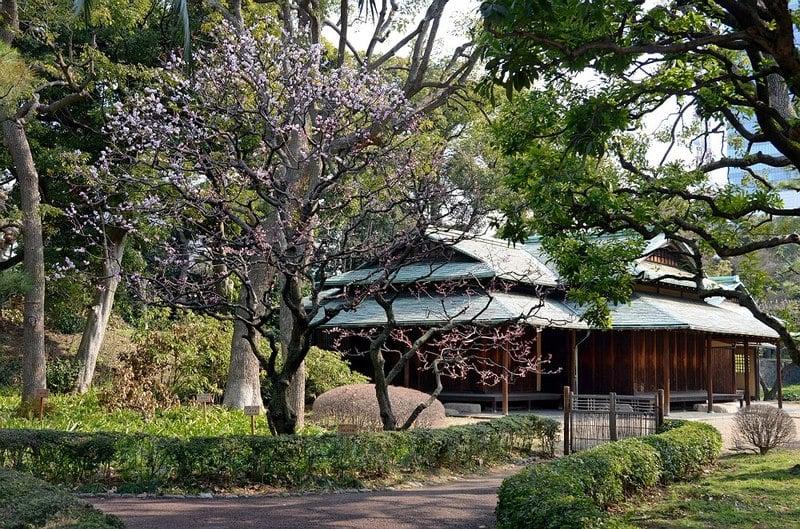 Дворец Императора в Токио. Еще раз / Фото из Японии