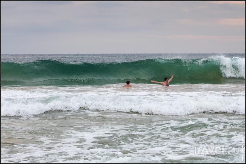 Но потом освоились и купались / Шри-Ланка