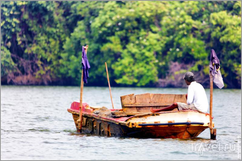 Один день провели на реке Мадху / Шри-Ланка