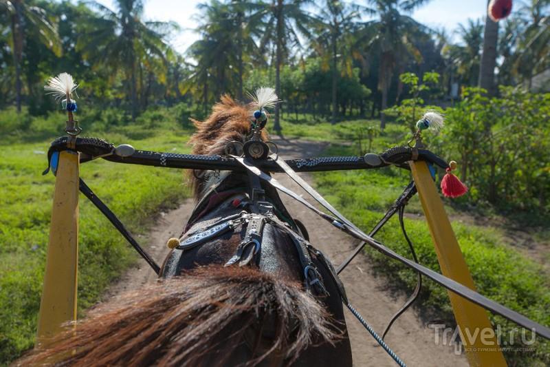 Индонезия: Гили Траванган / Индонезия