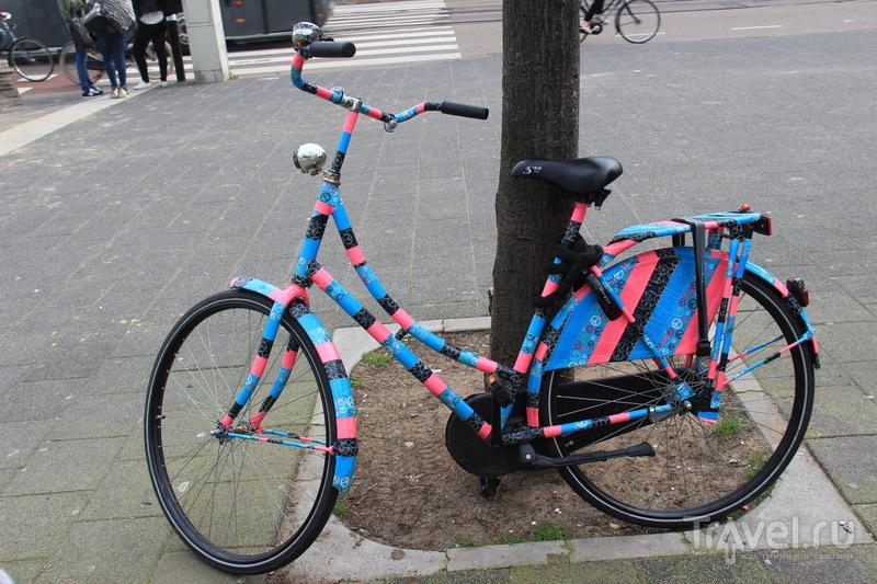Лучше Амстердама - только Амстердам, или цветы - дело не женское / Фото из Нидерландов