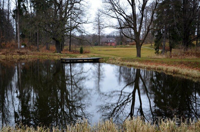 Пруд в английском парке. / Фото из Польши