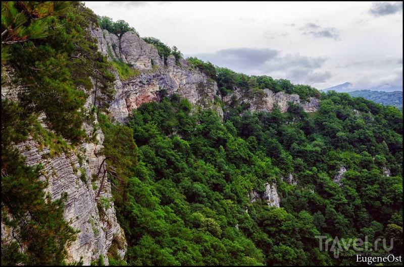 """Горный Сочи. Агурское ущелье. Взгляд с Орлиных скал. Сталинская дача """"Зелёная роща"""" / Фото из России"""