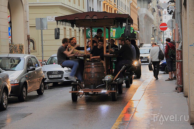 Любители пива / Фото из Венгрии