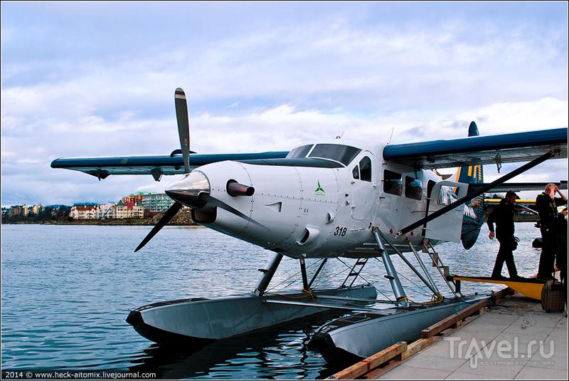 В небе над Британской Колумбией / Фото из Канады