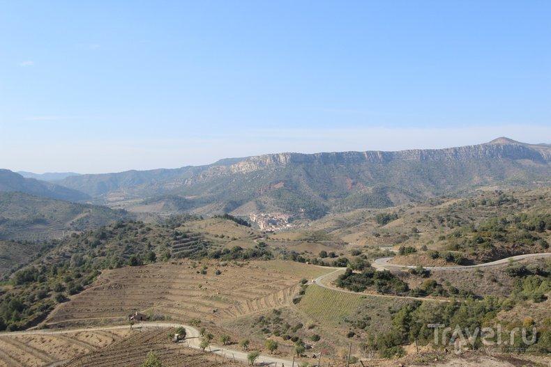 Лучшие винодельческие регионы Испании: Приорат / Испания