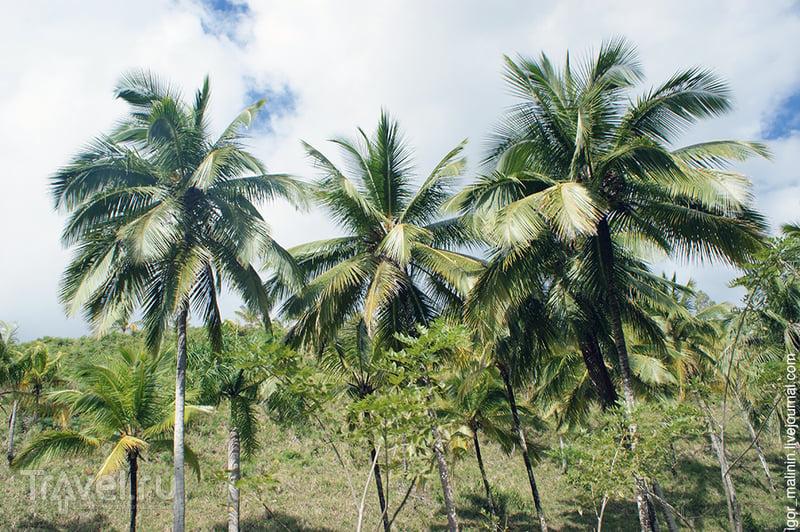 Доминиканская глубинка / Доминикана