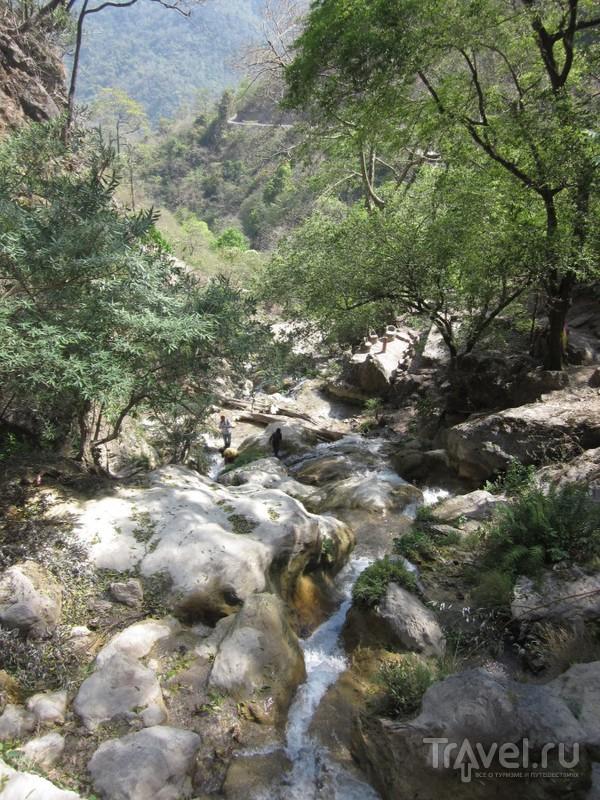 Поход в Гималаи: Паломничество в Бадринатх / Индия